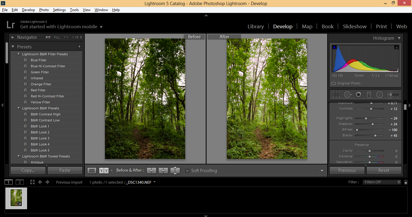 An Introduction to Simple Post Processing in Adobe Lightroom