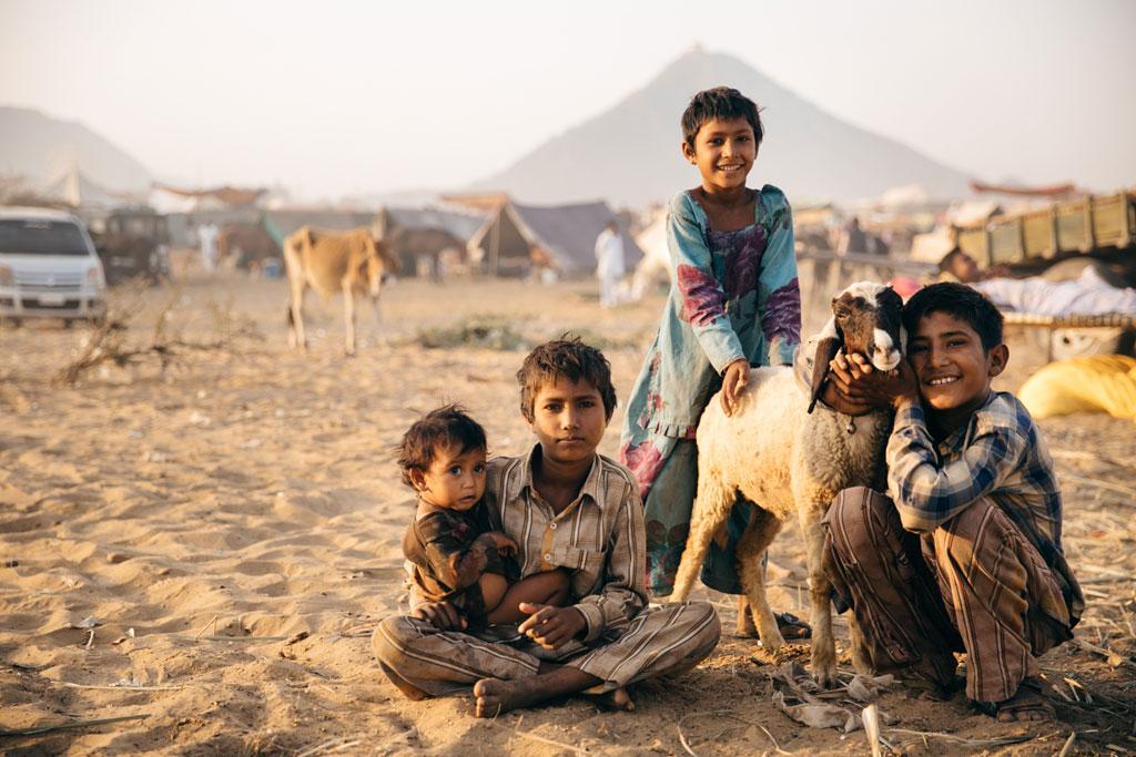 pushkar camel image
